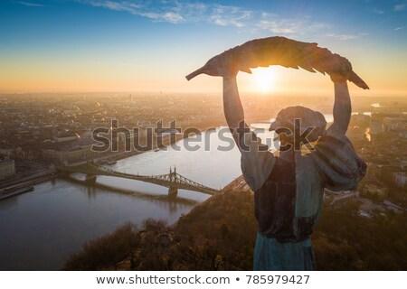 Liberty bridge at sunrise Stock photo © Givaga