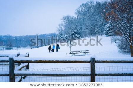 Buurt tieners illustratie weg kind landschap Stockfoto © colematt