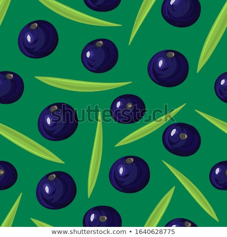 Seamless pattern with ripe acai berries. Brazilian superfruit. Euterpe oleracea. Superfood for healt Stock photo © user_10144511