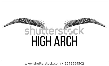 high arch vector hand drawn brows shape Сток-фото © pikepicture