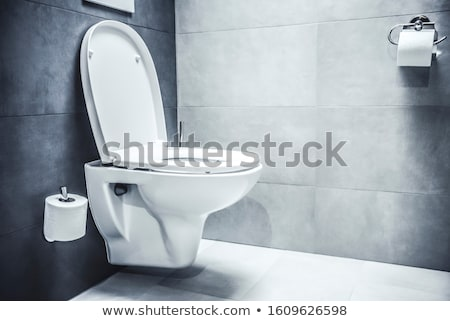white silhouette of a toilet bowl  Stock photo © mayboro