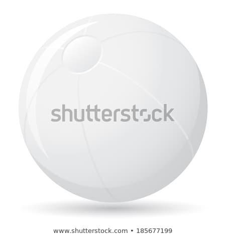 Vetor verão ilustração bola de praia jangada arenoso Foto stock © articular