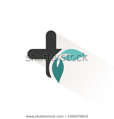 groene · apotheek · icon · arts · medische · ziekenhuis - stockfoto © imaagio