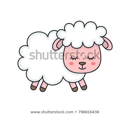 Cute Sheep Modern Flat Design Card. Stock photo © hittoon