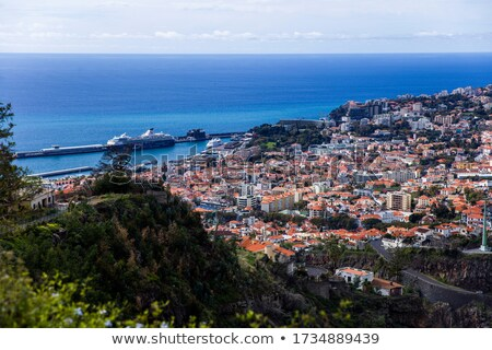 Distant view at town Funchal on Madeira island, Portugal Stock photo © boggy