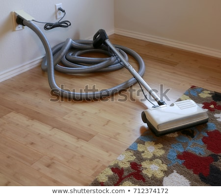 Central vacuum cleaner hose in living room Stock photo © hamik