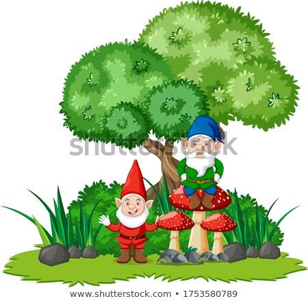 Gnom stałego grzyby biały ilustracja drzewo Zdjęcia stock © bluering