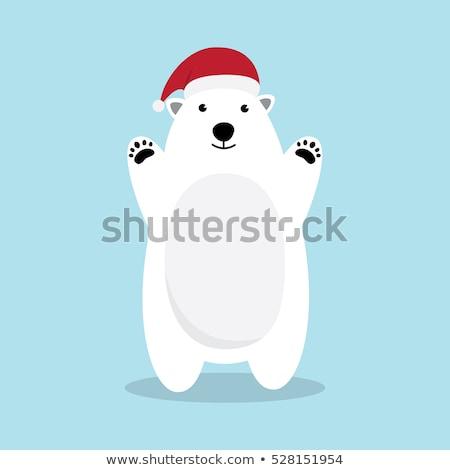 полярный медведь Cartoon иллюстрация Hat Сток-фото © bennerdesign