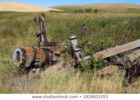 öreg · préri · kerék · kosár · Saskatchewan · Kanada - stock fotó © pictureguy