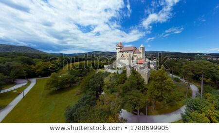 Liechtenstein château pierre peu pays Photo stock © arocas