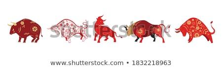 vermelho · vaca · fazenda · carne · animais · animal - foto stock © njaj