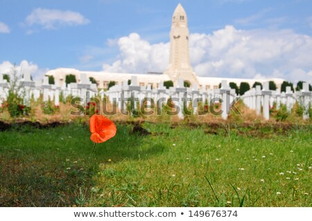 Verdun War Cemetery Stock photo © ribeiroantonio