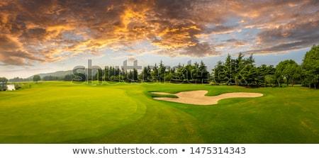 Stock fotó: Vibráló · zöld · golfpálya · kép · felhők · golf