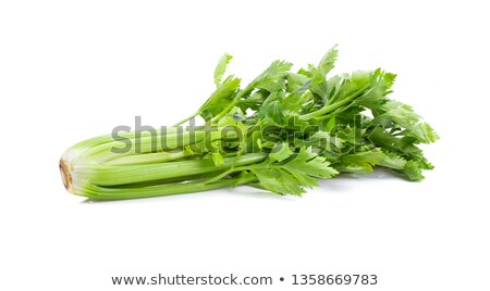 Celery isolated on a white background.  Stock photo © g215