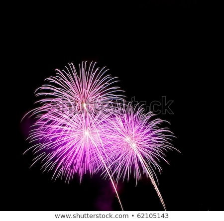 Purple Fireworks released in the dark sky Stock photo © ozaiachin