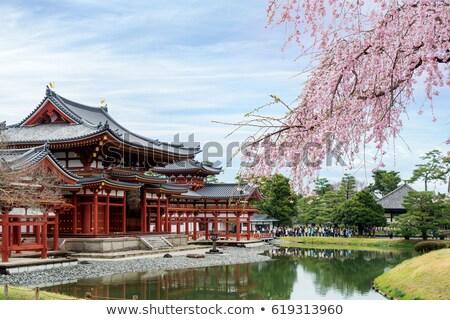 buddhista · templom · japán · völgy · híres · név - stock fotó © jewhyte