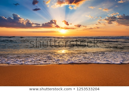 Mooie zonsopgang oceaan wolken gras Stockfoto © alex_davydoff