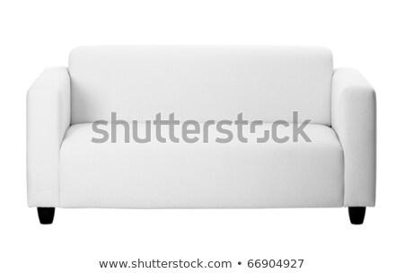 Ordinary gray sofa on white background Stock photo © pzaxe