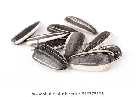 orzechy · odizolowany · biały · metal · przemysłu · stali - zdjęcia stock © ozaiachin