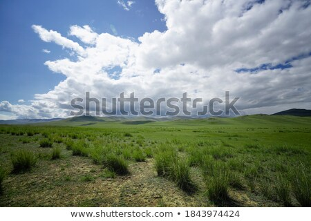 Volcanic Plains on a Cloudy Day Stock photo © wildnerdpix