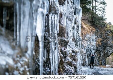 barlang · egyéb · akasztás · Föld · kő · földalatti - stock fotó © michaklootwijk