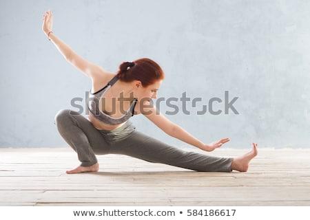 Tai chi nő vektor rajz sport jóga Stock fotó © pcanzo