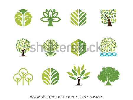 Abstract green tree icon logo stock photo © WaD