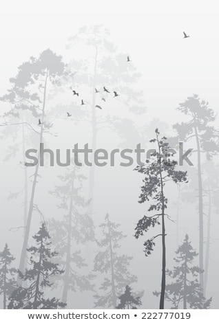 vector autumn landscape with cranes birds and trees stock photo © krabata