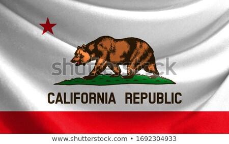 dalgalı · ikon · Kaliforniya · bayrak - stok fotoğraf © MikhailMishchenko