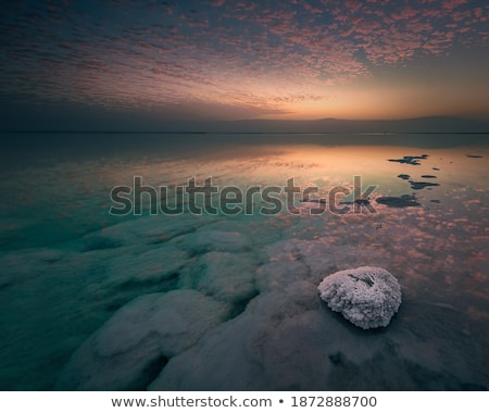 sel · mer · morte · Israël · blanche · roches · aigue-marine - photo stock © rglinsky77