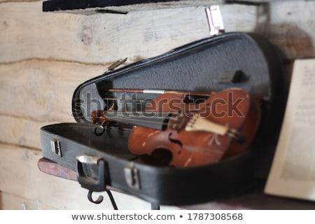 öreg hegedű jegyzetek zene fa éjszaka Stock fotó © Roka
