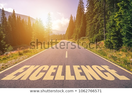 Service Concept. Customer Services Roadsign. Stock photo © tashatuvango