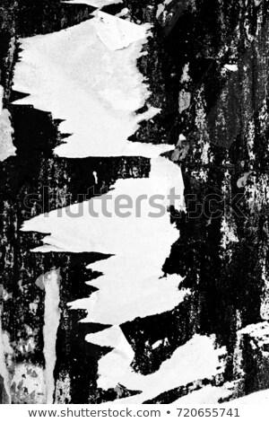 Beyaz boş sokak poster grunge boya Stok fotoğraf © Melvin07