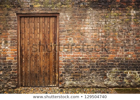 weathered door of an old building stock photo © pzaxe