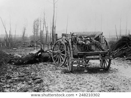 artilleryman Stock photo © pavelmidi