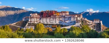 noite · palácio · famoso · tibete · espelho · água - foto stock © bbbar