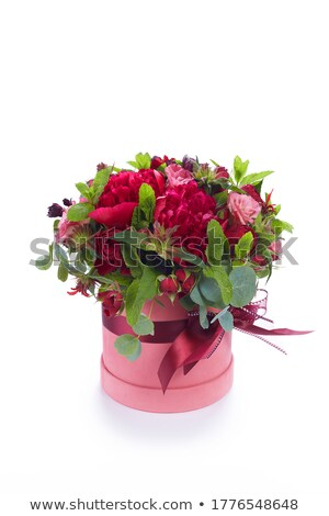 pink asters flowers bouquet  Stock photo © inxti