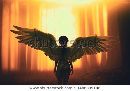 Nő angyal nagy angyali szárnyak arc Stock fotó © maros_b