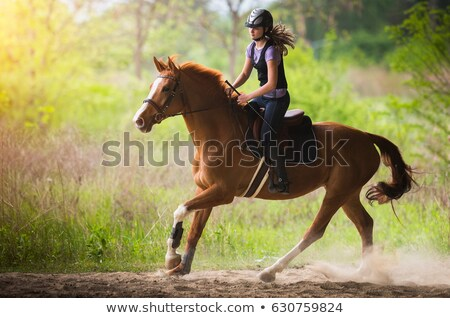 Teen Girl Riding Horse Stock photo © 2tun