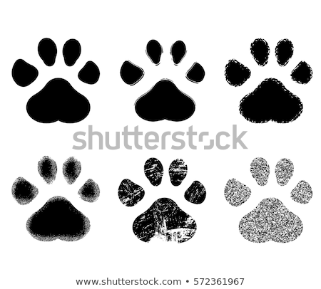 grunge paw prints stock photo © burakowski