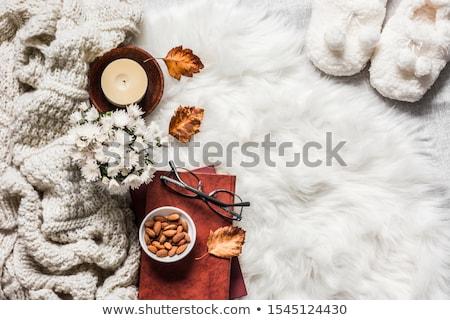 piros · fehér · tavasz · szépség · ősz · ajándék - stock fotó © sfinks