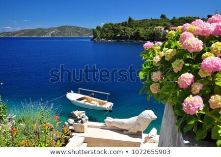 Korcula in the Adriatic sea in Croatia Stock photo © nature78