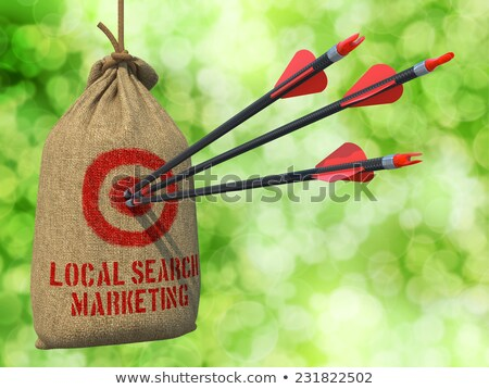 Local Search Marketing - Arrows Hit in Red Target. Stock photo © tashatuvango
