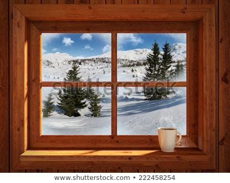 winter · bos · landschap · panorama · panoramisch · sneeuwval - stockfoto © ankarb