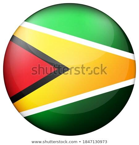 Gomb szimbólum Guyana zászló térkép fehér Stock fotó © mayboro1964