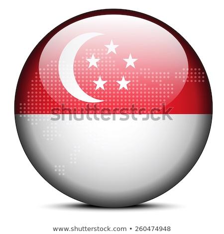 республика · Сингапур · вектора · цвета · карта · город - Сток-фото © istanbul2009