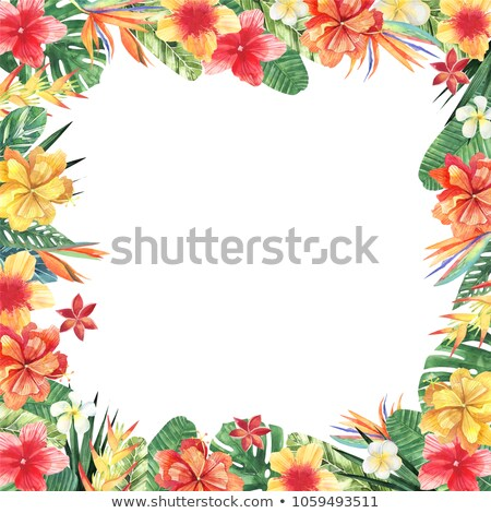 Luau border invitation stock photo © Irisangel
