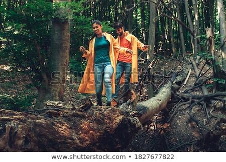 piedi · parco · amore · holding · hands · foresta - foto d'archivio © orensila