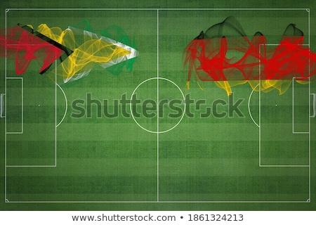 Németország Guyana zászlók puzzle izolált fehér Stock fotó © Istanbul2009