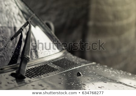 essay on elderly driving